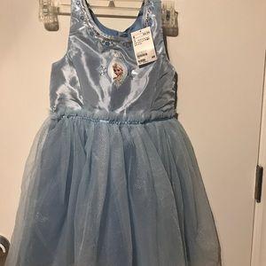 Beautiful Embellished Frozen Dress